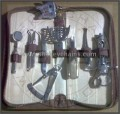 Dental Tools Kit (Ten Miniature SS Instruments) in Pouch