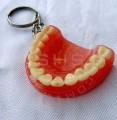 Denture Keychain with white Teeth